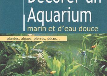 Décorer un aquarium marin et d'eau douce