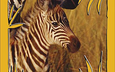 Les Bébés animaux des plaines africaines